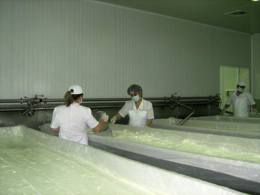 Производство на сирена и кашкавали - АПОЛО